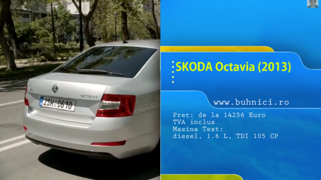 Skoda Octavia 2013 (www.buhnici.ro)
